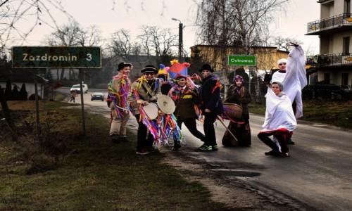 Zdjecie POLSKA / woj. kujawsko-pomorskie / Ostrowąs / kozy