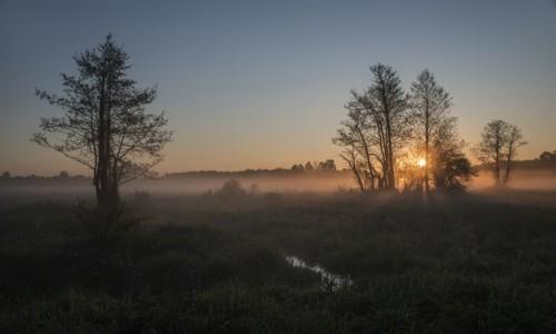 Zdjęcie POLSKA / Mazowsze / gm.Stoczek / o wschodzie