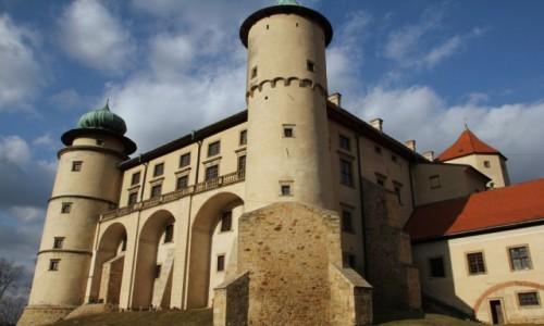 Zdjecie POLSKA / Małopolskie / Nowy Wiśnicz / Zamek 2