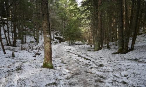 Zdjecie POLSKA / .. / .. / Po lodzie do Smreczyńskiego