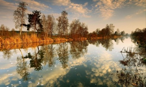 Zdjęcie POLSKA /  pow-żniński  / Dolina Noteci / Gdy mgła opadła!