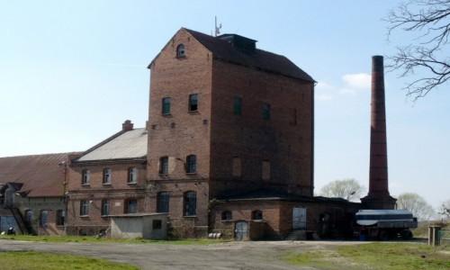 Zdjęcie POLSKA / opolskie / Sternalice / Budynki towarzyszące, obok dworu.