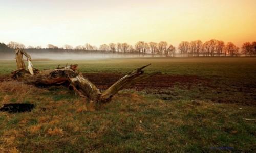 Zdjęcie POLSKA / Pow.Żniński / Dolina Noteci / Wiosenne burze