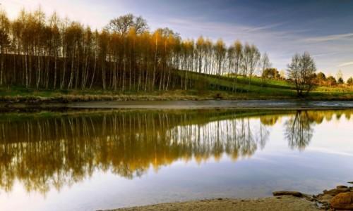 Zdjęcie POLSKA / Bory Tycholskie / Dolina Brdy / W otoczeniu przyrody.