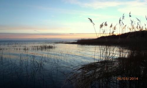 Zdjęcie POLSKA / Jezioro łebsko / Łeba / Senne jezioro