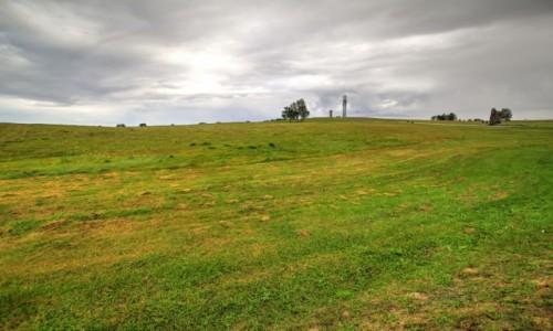 Zdjęcie POLSKA / warmińsko - mazurskie / Pola Grunwaldu / Puste pole, wiatru zew, tu czuć jeszcze bitwy krew.