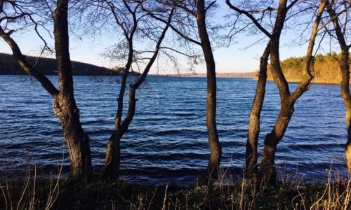 Zdjecie POLSKA / Kaszuby / Borucino / Kaszubskie jezioro