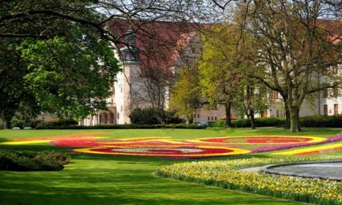 Zdjecie POLSKA / Wielkopolska / Poznań, park przed Teatrem Wielkim / rower z kwiatów?