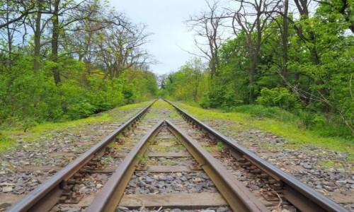 Zdjęcie POLSKA / Ziemia Lubuska / Łagów Lubuski, na wiadukcie kolejowym / zostało wspomnienie...
