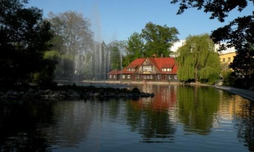 Zdjęcie POLSKA / opolskie / Opole / Przy tańczącej fontannie, stawek Barlickiego.