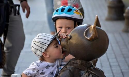 Zdjecie POLSKA / - / Łódź / dzieci lubią misie...