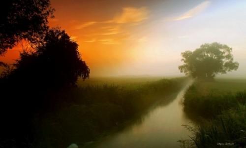 Zdjęcie POLSKA / Pow.Żniński / Dolina Noteci / Słońce wschodzi mgła opada!