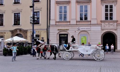 Zdjecie POLSKA / województwo małopolskie / Kraków / Rynek Główny