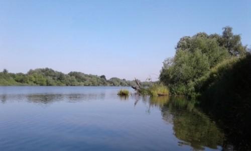 Zdjecie POLSKA / opolskie / Nad Odrą / Koryto rzeki