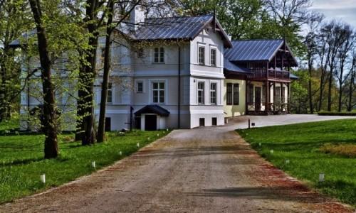 Zdjęcie POLSKA / kujawsko-pomorskie / Kłóbka / Dwór Orpiszewskich