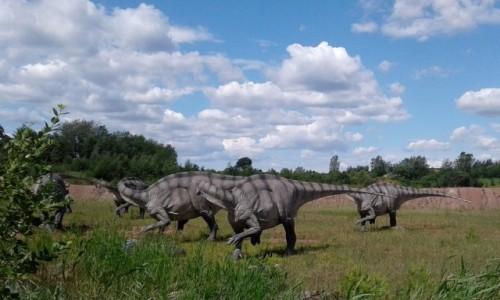 Zdjecie POLSKA / opolskie / Krasiejów / Spotkania z dinozaurami