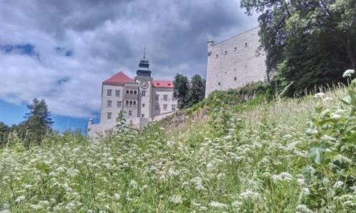 Zdjecie POLSKA / małopolska / OPN.. / Zamek  na Pieskowej Skale