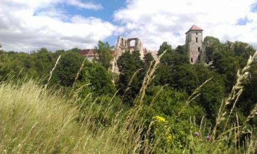 Zdjecie POLSKA / małopolska / ... / ruiny zamku w Rudnie