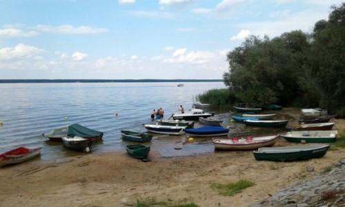 Zdjęcie POLSKA / opolskie / Turawa / Sezon nad jeziorem turawskim