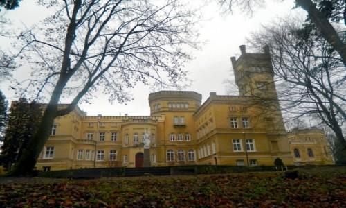 Zdjecie POLSKA / Jabłonowo Pomorskie. / Jabłonowo Zamek. / Jabłonowo Pom. - Zamek Narzymskich.