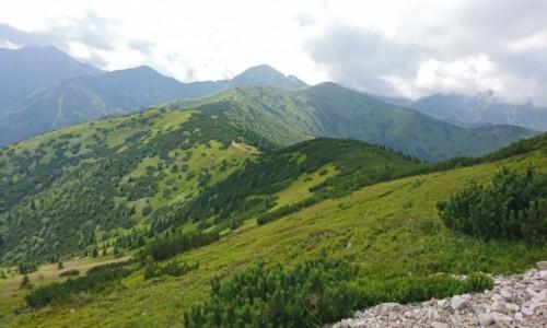 Zdjęcie POLSKA / Tatry Zachodnie / Szczyt / Panorama Tatr, widok z Grzesia