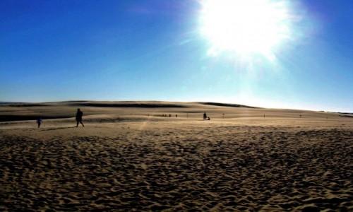 Zdjęcie POLSKA / Pomorze / Łeba / Polska Sahara