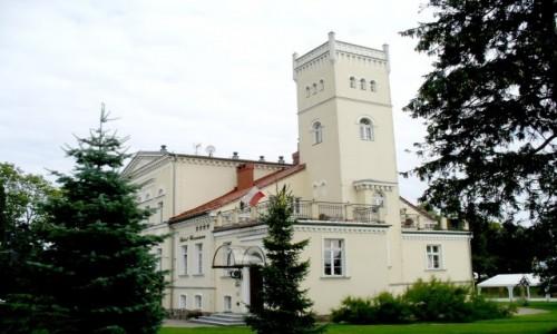 Zdjecie POLSKA / pomorskie / Rekowo Górne / Pałac, widok od strony wieży