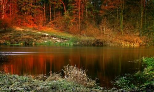 POLSKA / Bory Tucholskie / Dolina Brdy / Zachodzące słońce