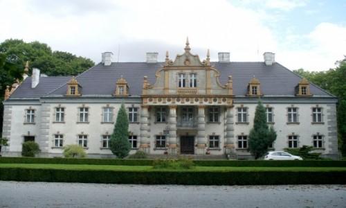 Zdjecie POLSKA / wielkopolskie / Siemianice / Pałac