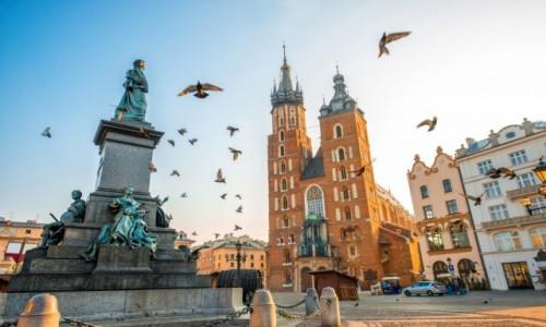 POLSKA / Małopolska / Kraków / Weekendowy Kraków