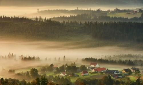 POLSKA / Beskid Śląski / Ochodzita / Poranne mgły