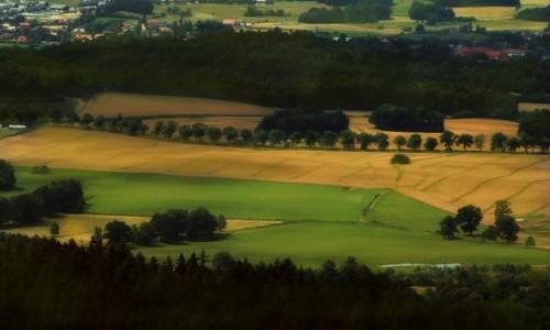 POLSKA / Dolny Śląsk / Góry Sokole / Z Sokolika