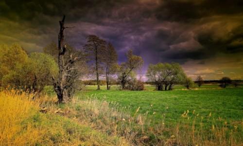 Zdjęcie POLSKA / pow-żniński / Dolina Noteci / Przed burzą
