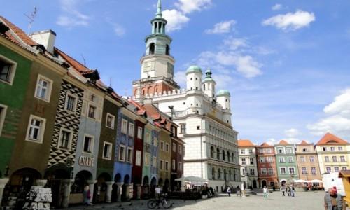 Zdjęcie POLSKA / Wielkopolska / Poznań / Lato w Poznaniu.