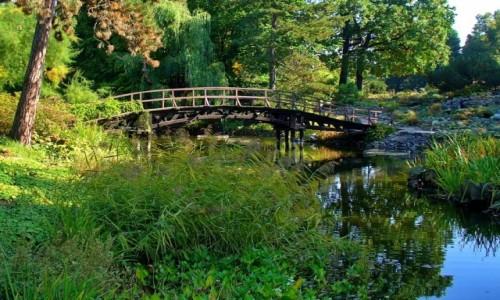 Zdjęcie POLSKA / dolnoślaskie / Wrocław / Mostek japoński w ogrodzie