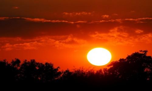 Zdjęcie POLSKA / Mazowieckie / okolice Otwocka / Zachód słońca