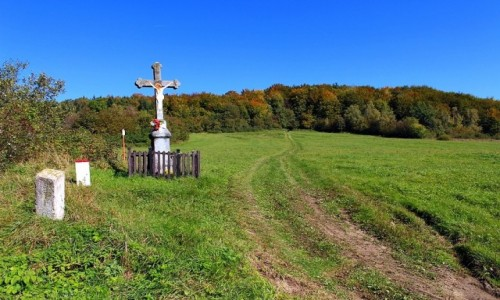 Zdjęcie POLSKA / Beskid Niski / Przełęcz Beskid nad Czeremchą / Na granicy