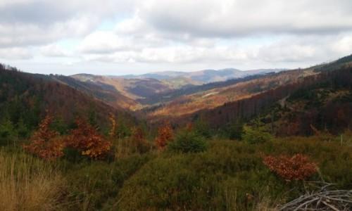 Zdjecie POLSKA / Beskid Śląski / Na szlaku na Skrzyczne / Jesień w górach