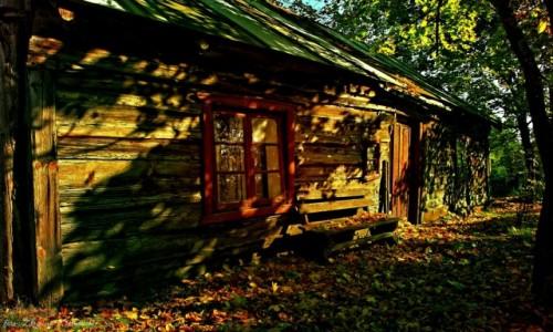 Zdjęcie POLSKA / Bory Tucholskie / Kasparus / Wieś kociewska