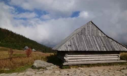 Zdjęcie POLSKA / Tatry Wysokie / Dolina Gąsienicowa / Królowe Rówienki II