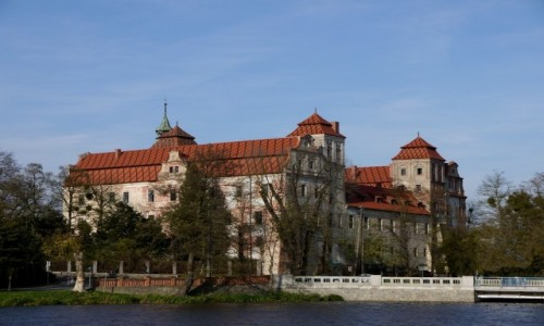 Zdjecie POLSKA / opolskie / Niemodlin / Zamek