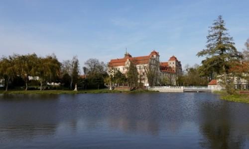 Zdjęcie POLSKA / opolskie / Niemodlin / Zamek nad stawem zamkowym