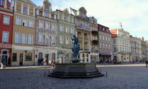 Zdjęcie POLSKA / Wielkopolskie / Poznań / Stary Rynek
