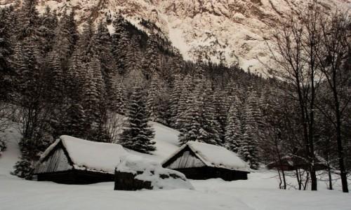 Zdjecie POLSKA / Tatry / Dolina Strążyska / Strążyska zimą