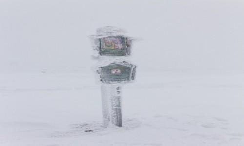 Zdjecie POLSKA / Masyw Śnieżnika / Śnieżnik / Zima na szczycie
