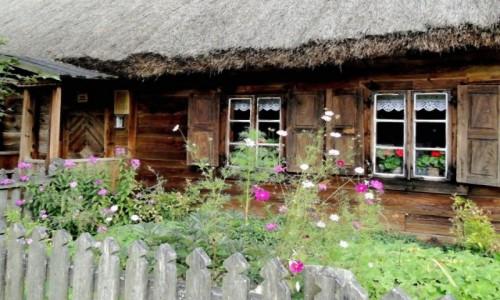 Zdjęcie POLSKA / Podlasie / Ciechanowiec / Podlaskie klimaty.