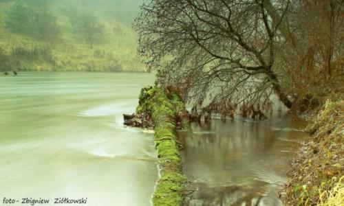 Zdjęcie POLSKA / Bory Tucholskie / Dolina Brdy / Doliną Brdy