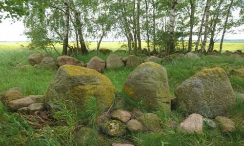 Zdjęcie POLSKA / zachodniopomorskie / Dolice / Dolice, megality sprzed 5000 lat