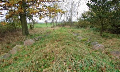 Zdjęcie POLSKA / zachodniopomorskie / Dolice / groby megalityczne sprzed 5000 lat,  Krępcewo
