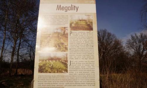 Zdjecie POLSKA / Polska pn-zach / Trzebień / Megality - starsze od piramid